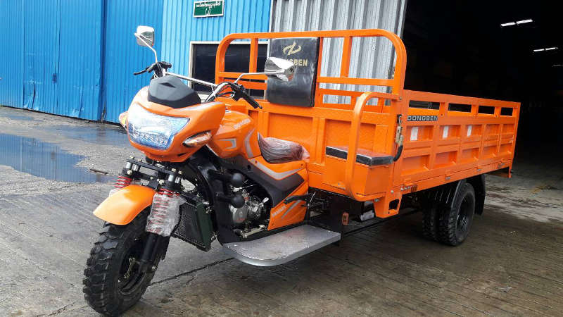 Dongben Brand Tricycle (DB300ZH-300CC)(9 Feet)